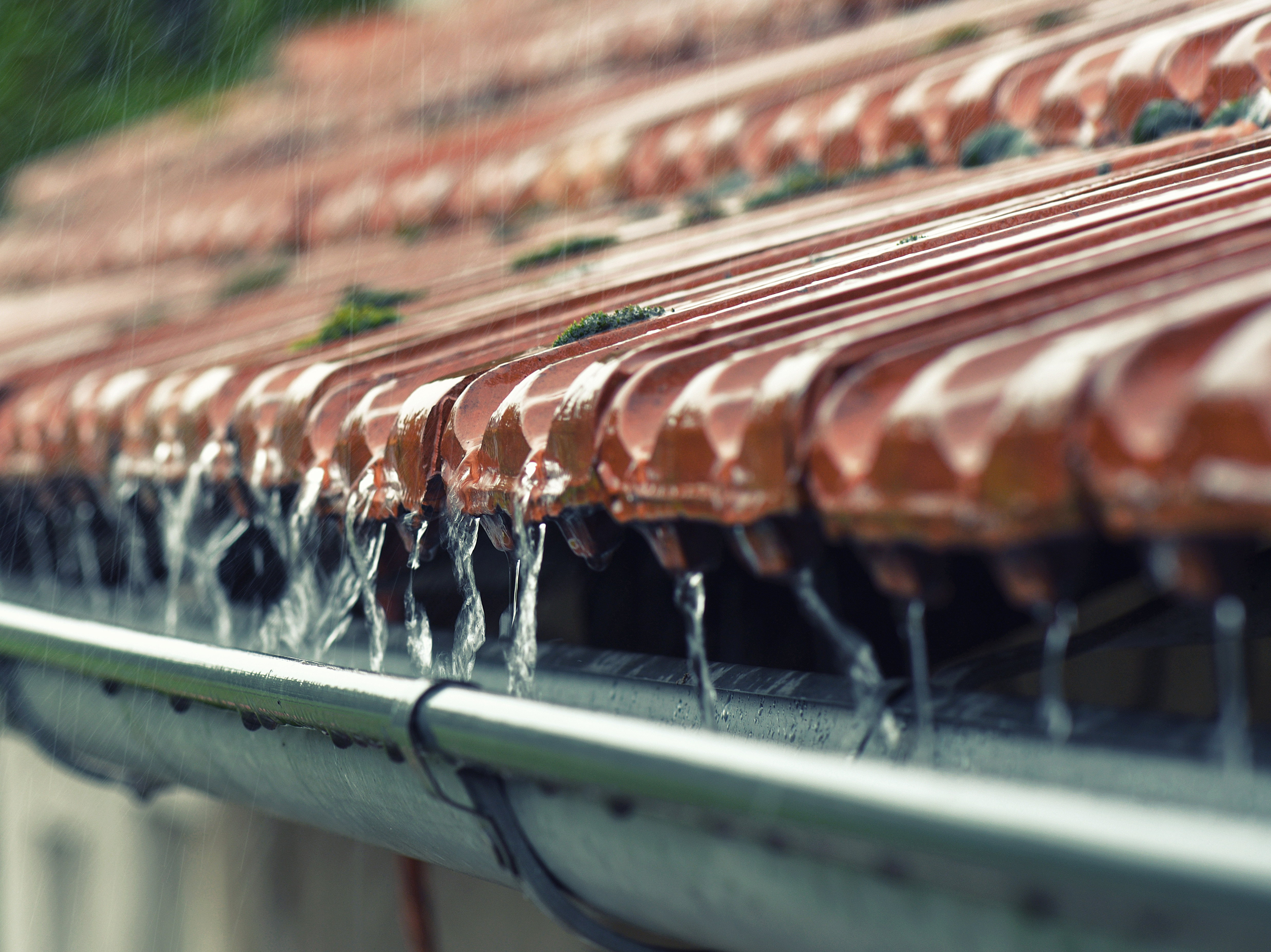 Roof gutter with rain